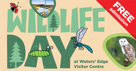 Wildlife Day 2019 banner