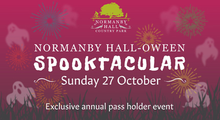 Halloween Spooktacular at Normanby Hall