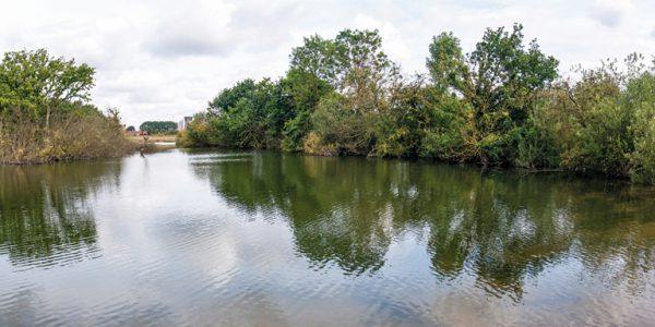Ashbyville pond