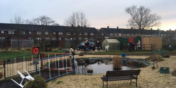 Pond and seating at Healey Road allotments, Scunthorpe