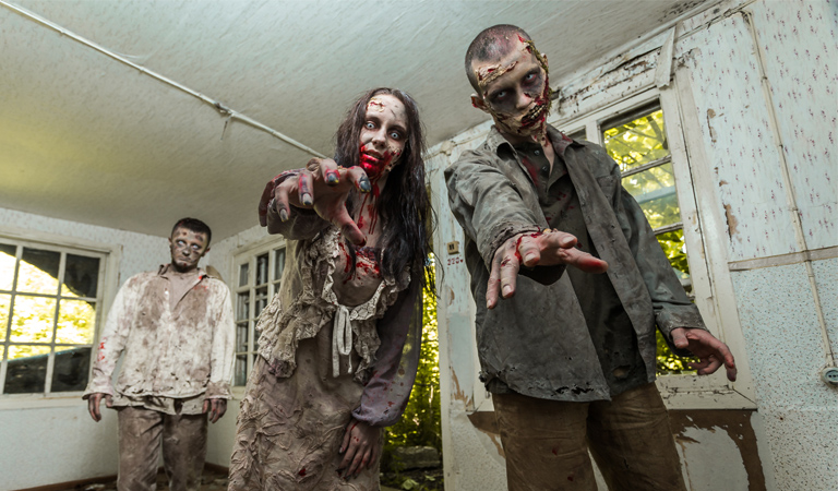 Film company appealing for local zombies