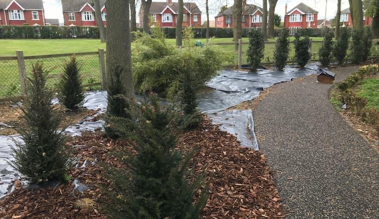 Sheffield Park undergoes amazing transformation