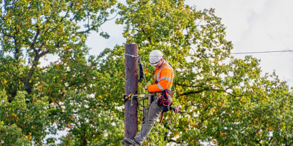 Photograph of a man installing wiring on a telegraph pole