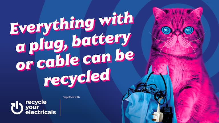 Listen to HypnoCat and recycle your old small electricals